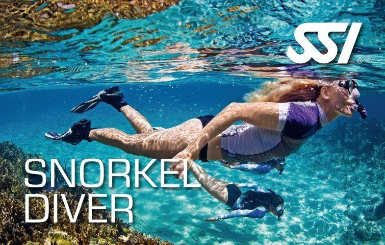 https://www.blanes-sub.com/wp-content/uploads/2020/04/190372_470000_snorkel_diver_small.jpg