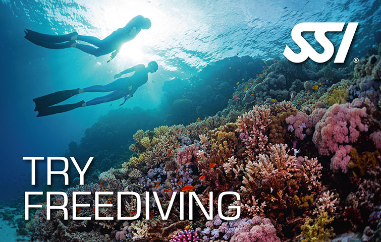https://www.blanes-sub.com/wp-content/uploads/2020/04/try-free-diving-SSI.jpg